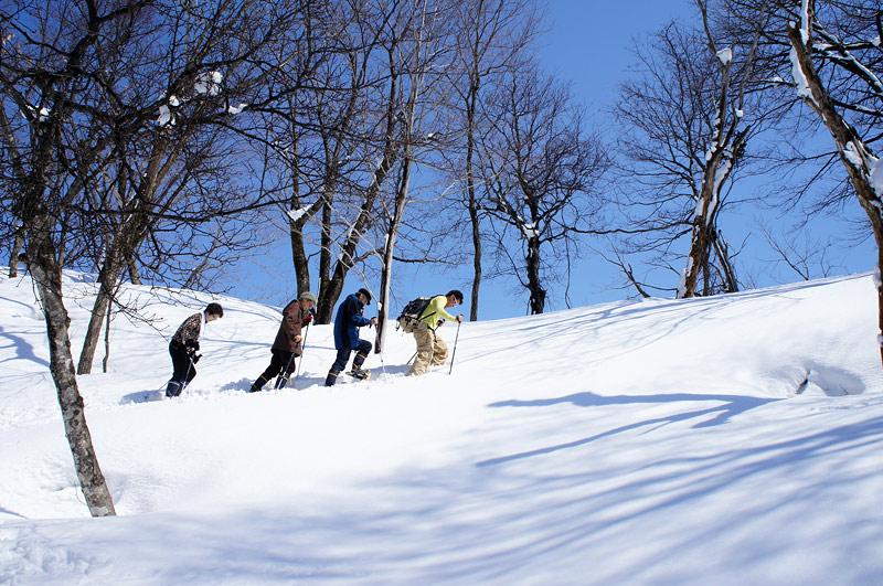 snowshoe01